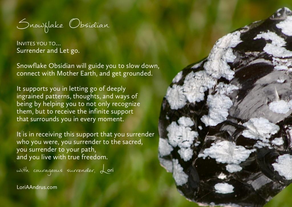 Snowflake Obsidian - Lori A Andrus