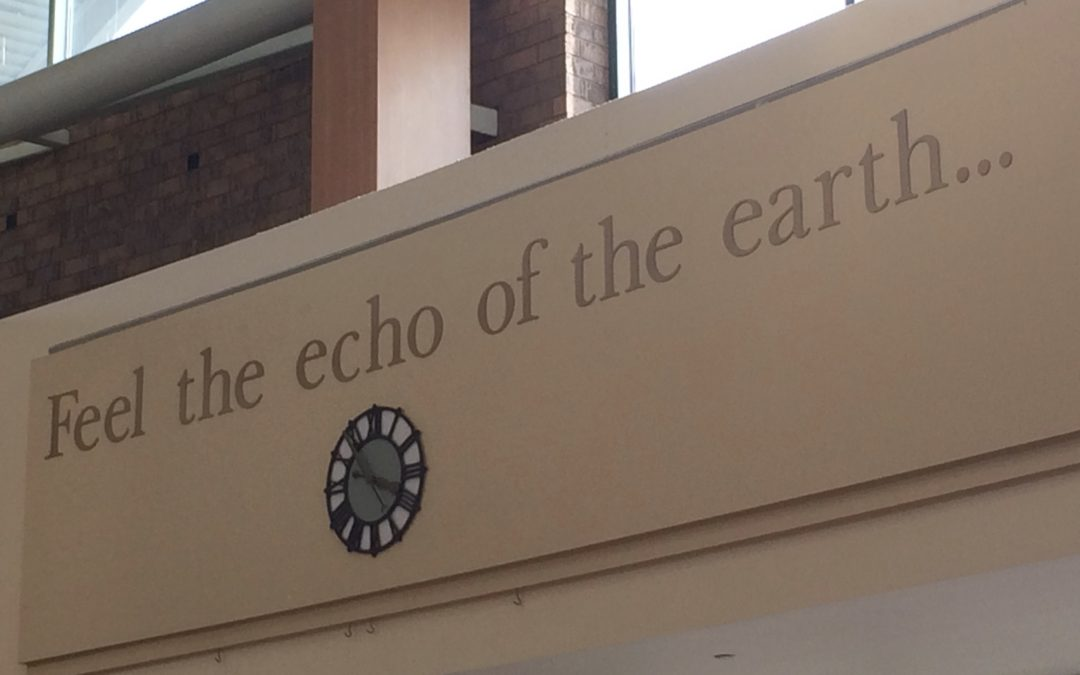 Feel the Echo of the Earth