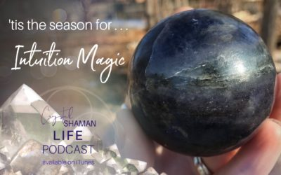'tis the season for Intuition Magic